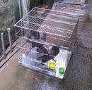 Tp. Hà Nội: chuồng gà, bồ câu, chim inox36 CL1389056