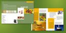 Tp. Hà Nội: in brocher đẹp giá rẻ ,thiết kế miễn phí CL1374303
