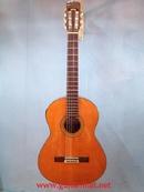 Tp. Hồ Chí Minh: Chuyên bán đàn guitar Nhật giá rẻ CAT236
