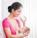 Tp. Hồ Chí Minh: Món ăn gà ác tiềm, bồ câu tiềm, ... . cho bà mẹ mang thai và chop con bú ! CL1588423