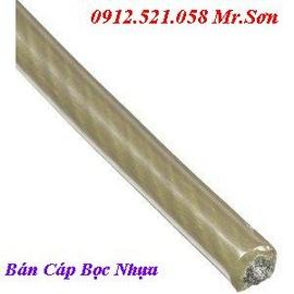 0913.521.058 Bán Cáp Bọc Nhựa ,Cáp lụa HÀ NỘI @ bán tăng đơ căng cáp cầu thang