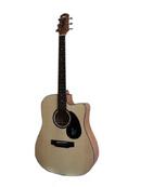 Tp. Hà Nội: Đàn Guitar Acoustic Mantic AG-1C CL1399666