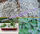 Tp. Hồ Chí Minh: đá perlite, đá xốp perlite CL1696891