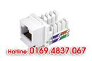 Tp. Hà Nội: Hop Mang RJ45 100 hạt/ 1 hộp, hop hạt thoại RJ11, nhân RJ45, đế + mặt mạng RJ45 CL1623336