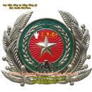 Tp. Hà Nội: Cup, huy chương, biểu trưng, huy hiệu các loại, duc dong, go dong, che tac dong, CL1424859