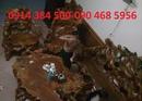 Bắc Giang: bán bàn ghế độc nhất lũa Lim rừng Hà Bắc 2 CL1424859