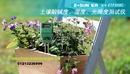 Tp. Hồ Chí Minh: Máy đo độ ẩm, độ PH, ánh sáng của đất ETP300C CL1432268