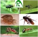 Tp. Hà Nội: Dịch vụ diệt muỗi an toàn tại Hà Nội CL1435870