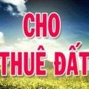 Tp. Hồ Chí Minh: Cho thuê đất tại quận Gò Vấp CL1550968