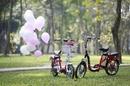 Tp. Hà Nội: Xe đạp điện Giant, cách lựa xe đạp điện phù hợp CL1495653