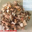 Tp. Hồ Chí Minh: bệnh gút và sự nguy hiểm không ngờ CL1498657P3