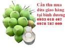 Bình Dương: Cần thu dừa tươi giao hàng tại bình dương 0978787009 RSCL1215456