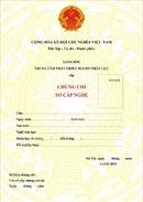 Tp. Hà Nội: Học sơ cấp nghề nấu ăn RSCL1193929