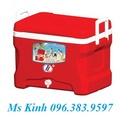 Tp. Hồ Chí Minh: bán thùng đá, thùng đá nhựa, thùng đựng đá, thùng đá cỡ lớn, sản xuất thùng đá CL1499352