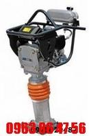 Tp. Hà Nội: Tìm địa chỉ cung cấp máy đầm đất mt55, mt72, đầm cóc robin giá rẻ CL1504731