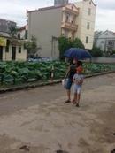 Tp. Hà Nội: Bán gấp 48m2 đất Kinh doanh tốt tại Văn Trì, Minh Khai CL1504904