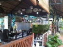 Tp. Hồ Chí Minh: Thiết kế quán cà phê chuyên nghiệp nhanh RSCL1658164