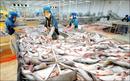 Tp. Hồ Chí Minh: việc công chứng giấy tờ xuất nhập khẩu hàng đông lạnh CL1549547