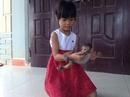 Tp. Hà Nội: Cần bán chú khỉ 5 tháng tuổi CL1218668