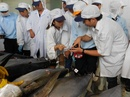 Tp. Hồ Chí Minh: Dịch vụ kiểm tra hàng thủy hải sản trước khi xuất kho CL1699129