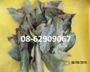 Tp. Hồ Chí Minh: Trà lÁ MÃNG CẦU XIÊM-Sản phẩm Hỗ trợ chữa bệnh ung thư RSCL1089874