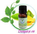 Tp. Hà Nội: Tinh dầu ngọc lan tây tự nhiên CL1601922