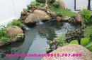 Cao Bằng: Thi công cẩy giả, thi công cây xanh sân vườn, tiểu cảnh trước nhà, sân vườn biệt RSCL1199225