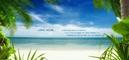 Bà Rịa-Vũng Tàu: cần bán gấp căn hộ nghỉ dưỡng ngay bãi biển Vũng Tàu, giá cực hấp, chỉ 837tr/ căn CAT1_57_300