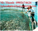 Tp. Hà Nội: Lưới quây nuôi ao cá, đầm cá CAT247_279P8