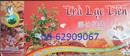Tp. Hồ Chí Minh: Trà Lạc Tiên-Người bị mất ngủ sẽ có giấc ngủ ngon lành CL1553322