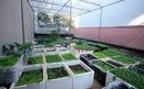 Tp. Hồ Chí Minh: Tuyển nam nữ làm vườn, chăm sóc cây, chăn nuôi, bao ăn ở CL1568392