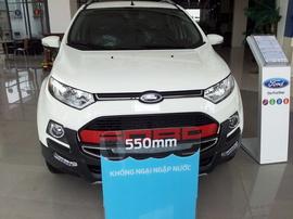 Ford Ecosport Plus - Phiên Bản Thể Thao - GIÁ ĐẶC BIỆT