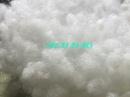 Bà Rịa-Vũng Tàu: Bông gòn làm thú nhồi bông giá sỉ rẻ nhất CL1679244P3