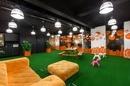 Tp. Hồ Chí Minh: Thảm cỏ nhân tạo cho văn phòng làm việc CL1650496P3