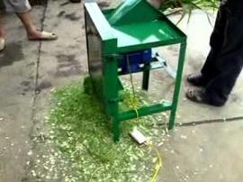 Máy thái chuối, rau bèo, băm cỏ giá rẻ điện máy Hoàng Long