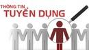 Tp. Hồ Chí Minh: Tuyển nhân viên online Thu nhập hấp dẫn 5-9tr/ th, 2-3h/ ng thời gian tự do CL1702946