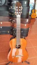 Tp. Hồ Chí Minh: Bán guitar Morris 115 CL1665091P10