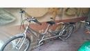 Tp. Hà Nội: Bán lại xe đạp đôi hiệu Asama nhập khẩu nguyên chiếc CAT3_36P5