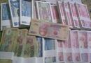 Tp. Hồ Chí Minh: Đổi 2 USD năm Bính Thân giá rẻ nhất thị trường cho Cty lữ hành dùng để biếu KH CL1603641