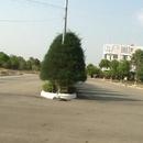 Tp. Hồ Chí Minh: Đất giáp Linh Xuân, BIG C Dĩ An, giá gốc chủ đầu tư, LH 0901 46 40 43 CL1592525