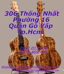 Tp. Hồ Chí Minh: Đàn ukulele chào năm Bính Thân giá cực là rẻ luôn **. .** ! CL1617315