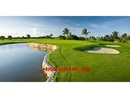 Tp. Hồ Chí Minh: Cỏ golf nhân tạo cho green golf, sân golf mini CL1614009