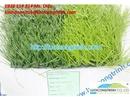 Tp. Hồ Chí Minh: Thảm cỏ nhân tạo bao che sân tennis giá rẻ CL1601720