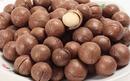 Tp. Hồ Chí Minh: Bán hạt macadamia sỉ lẻ, hạt macca chất lượng giá rẻ nè 0909 886 836 CL1134538