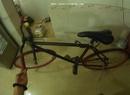 Tp. Hải Phòng: Bán xe đạp fixed gear màu đỏ đen. Xe còn mới chưa sửa chữa CAT3_36P4