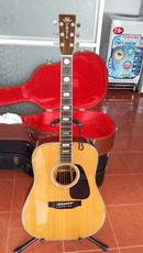 Tp. Hồ Chí Minh: Guitar Morris Nhật 810 TF CL1669253P7