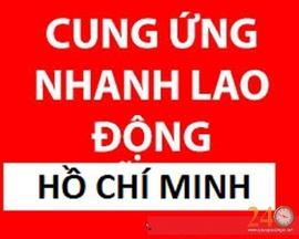 Cung Ứng Nhanh Lao Động Miễn Phí Phạm Hồng Phát