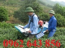 Tp. Hà Nội: Nhà phân phối máy hái chè chính hãng Ochiai-120v Nhật Bản giá rẻ nhất CL1634774
