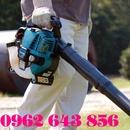 Tp. Hà Nội: Tại đây bán máy thổi lá Makita BHX2500 chính hãng chất lượng và giá cả tốt nhất RSCL1097270