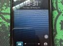 Tp. Hà Nội: Bán ipod touch gen 4 black bản ZA CL1661100